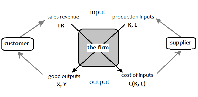proprietist theory and the ipo model